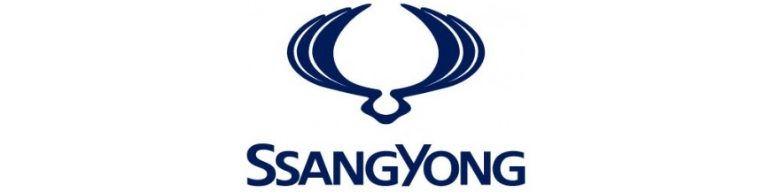 _Ssang Yong